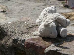 Lamby on the harbour wall